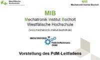 WHS_MIB_Prof Peitzmann